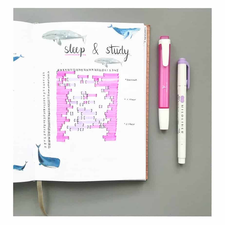 Bullet Journal Page Ideas For School, spread by @nias.journal | Masha Plans