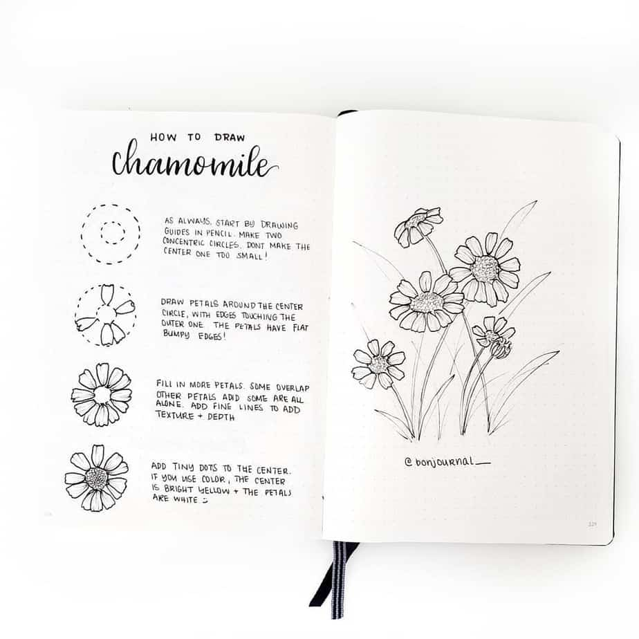 Master Your Bullet Journal Doodles, @bonjournal_ | Masha Plans