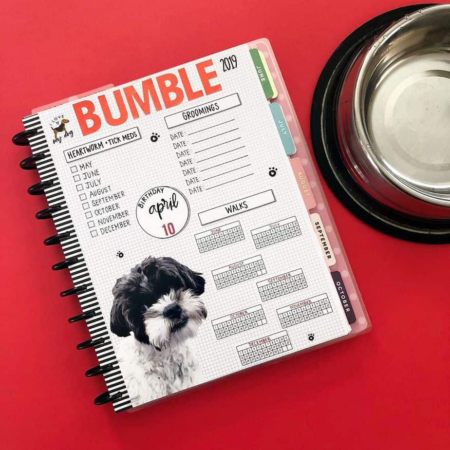 Pet Tracker @planningwithbumble | Masha Plans