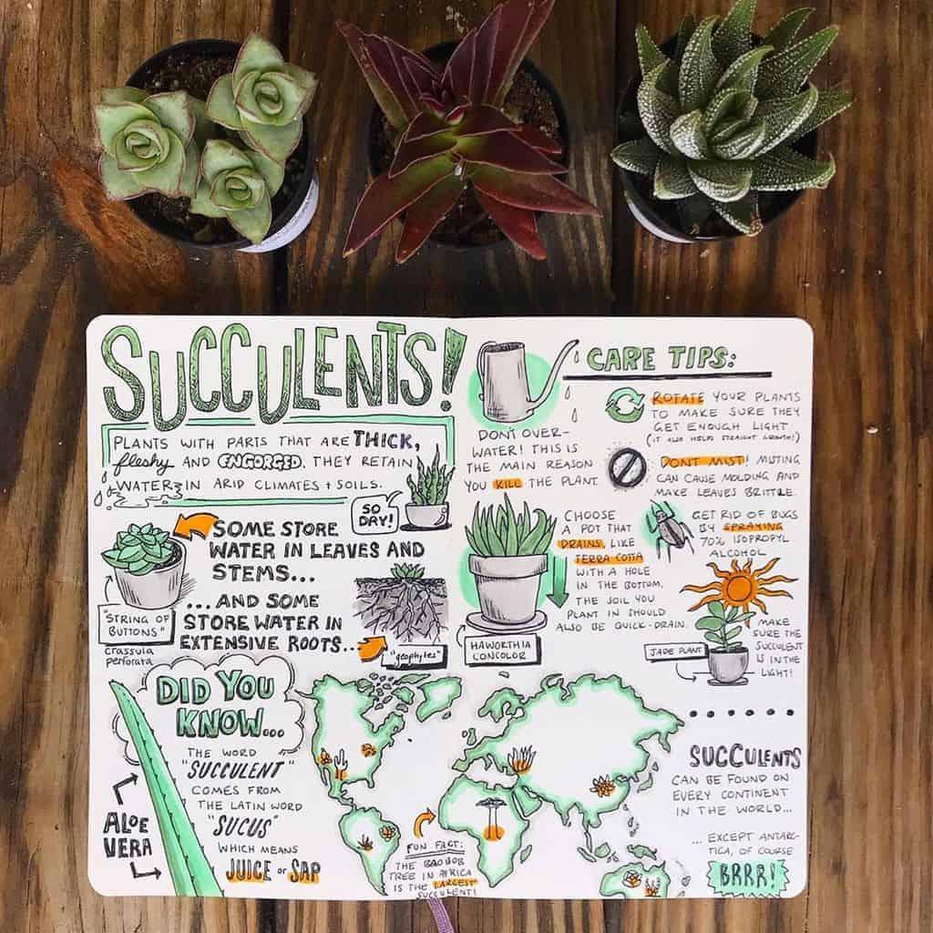 Sketchnotes by @emily_a_mills | Masha Plans